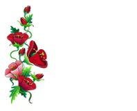 De rode samenstelling van het bloemenkader Stock Afbeeldingen