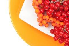 De rode sappige rijpe viburnumbessen liggen op een witte schotel op oranje ronde plaat Stock Afbeeldingen