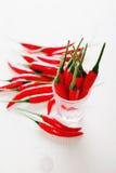 De rode selectieve nadruk van de Spaanse peperpeper op een rij Royalty-vrije Stock Foto's
