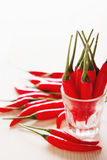 De rode selectieve nadruk van de Spaanse peperpeper op een rij Stock Fotografie