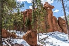 De rode snoeken nationaal boscolorado springs van het rotskampeerterrein woodl Royalty-vrije Stock Afbeelding