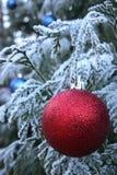 De rode snuisterij van Kerstmis, berijpte boom Stock Afbeelding