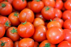 De rode tomaten in de mand. stock foto