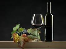 De rode wijn van de fles, glas, druiven zwarte achtergrond Stock Afbeelding