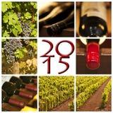 de rode wijn vierkante foto's van 2015 Stock Afbeeldingen