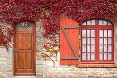 De rode wijnstok van de herfst op huis Royalty-vrije Stock Afbeelding