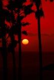 De rode Zonsondergang van de Hemel Royalty-vrije Stock Afbeeldingen