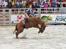 De rodeo toont stock afbeelding