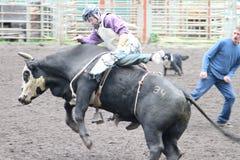 De Rodeo van de Vallei van Nicola Stock Foto's