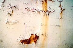 De roest en de het metaaloppervlakte van het erosieijzer hadden schade door weathe stock afbeelding