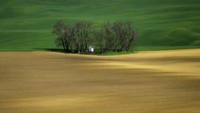 De rollende heuvels van Moravië met tarwe filds Stock Afbeelding