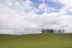 De rollende heuvelslandbouwgrond Royalty-vrije Stock Foto's