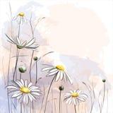 De romantische achtergrond van de bloem Royalty-vrije Stock Afbeeldingen