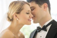 De romantische Bruid van Bruidegomabout to kiss Royalty-vrije Stock Fotografie