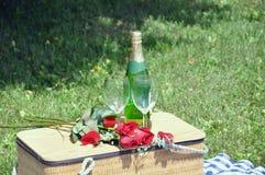 De romantische Drank van de Picknick Stock Afbeeldingen
