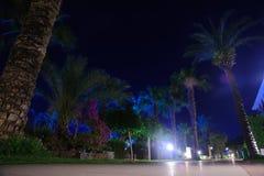 De romantische en mooie donkerblauwe hemel van de nacht tropische plaats Stock Afbeeldingen