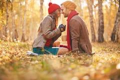De romantische Herfst Royalty-vrije Stock Foto's