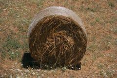 De ronde Baal van het Hooi stock afbeelding