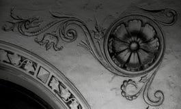 De ronde bloem groeit op de hoek royalty-vrije stock afbeelding