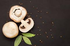 De ronde en grote champignonpaddestoelen liggen op een zwarte achtergrond met laurierblad en peper stock foto's