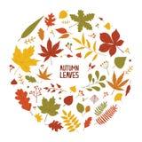 De ronde de herfstsamenstelling met droge die boombladeren, vertakt zich en bessen op witte achtergrond worden geïsoleerd Decorat royalty-vrije illustratie