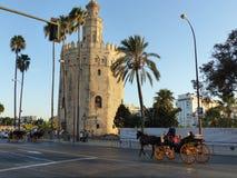 De ronde toren van het goud aan Sevilla in Andalusia in Spanje Stock Fotografie