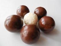 De ronde van het chocoladesuikergoed en één wit close-up stock foto