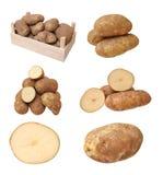 Roodbruine aardappel Stock Foto
