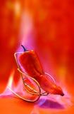 De roodgloeiende Peper van de Spaanse peper Royalty-vrije Stock Fotografie
