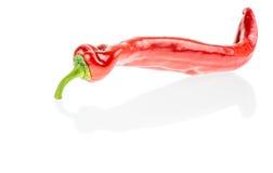 De roodgloeiende Peper van de Spaanse peper Royalty-vrije Stock Afbeeldingen