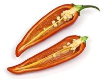 De roodgloeiende Peper van de Spaanse peper Stock Afbeeldingen