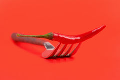 De roodgloeiende Spaanse peper van de Spaanse peperpeper op vork op rode backgro Stock Fotografie