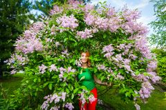 De roodharige mooie vrouw stock fotografie