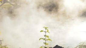 De rook Hete lente van de hete lentes stock videobeelden