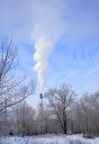 De rook van de schoorsteen in bos Stock Fotografie