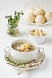 De room-soep van de paddestoel Royalty-vrije Stock Afbeeldingen
