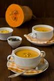 De room-soep van de pompoen Stock Afbeeldingen