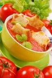 De roomsoep van de tomaat met croutons Royalty-vrije Stock Afbeelding