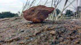De rots Stock Foto