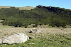 De rots van Bucegi Royalty-vrije Stock Afbeeldingen