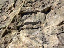 De rots van de berg Stock Foto