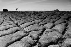 De rots van de kust Royalty-vrije Stock Afbeelding