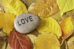 De Rots van de liefde met de Bladeren van de Daling Stock Fotografie