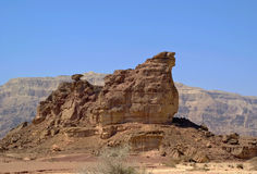 De rots van de sfinx Stock Foto's