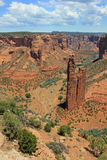 De Rots van de spin in Canyon DE Chelly Royalty-vrije Stock Afbeeldingen