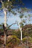 De Rots van Nourlangie, Kakadu Royalty-vrije Stock Afbeeldingen