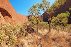 De Rots van Uluruayers, Noordelijk Grondgebied, Australië royalty-vrije stock fotografie