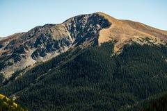 De Rotsachtige Bergen van Colorado Stock Foto