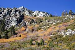 de rotsachtige herfst van granietheuvels Stock Afbeelding