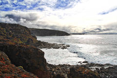 De rotsachtige kustlijn van het kangoeroeeiland stock foto